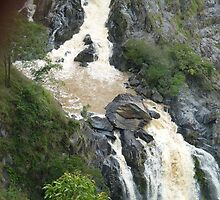 Barron Falls North Queensland .via Kuranda by Virginia  McGowan