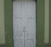 White Door in Green Wall by rhamm