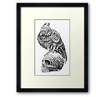 Red-Tail Skull Framed Print