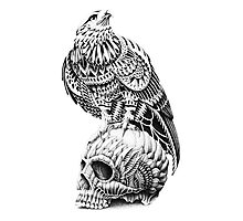 Red-Tail Skull Photographic Print