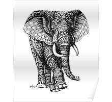 Ornate Elephant v.2 Poster