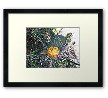 ©MS Lonely Flower VA Framed Print