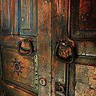 Door of Many Colors by Lucinda Walter