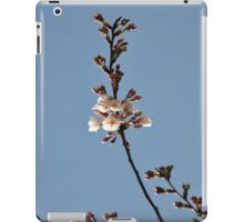Ipad Cover iPad Case/Skin