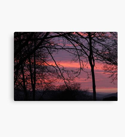 At the edge of Fangorn Forest - 11 Canvas Print