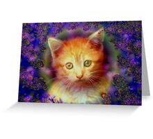 Kitten Portrait Greeting Card