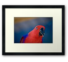fantasy By Ken Killeen Framed Print