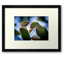 sharing By Ken Killeen Framed Print