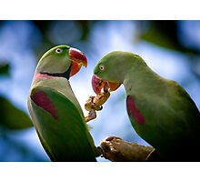 sharing By Ken Killeen Photographic Print