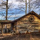 Log Cabin @ Yates Mill by Kyle Wilson