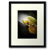 sunny disposition by Ken Killeen Framed Print