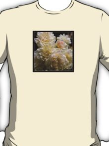white roses and a light pink bud (square) T-Shirt