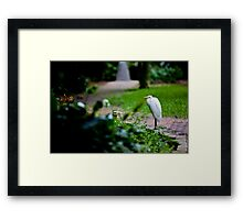 sanctuary By Ken Killeen Framed Print