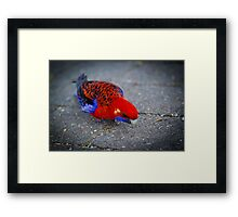 concrete colour By Ken Killeen Framed Print