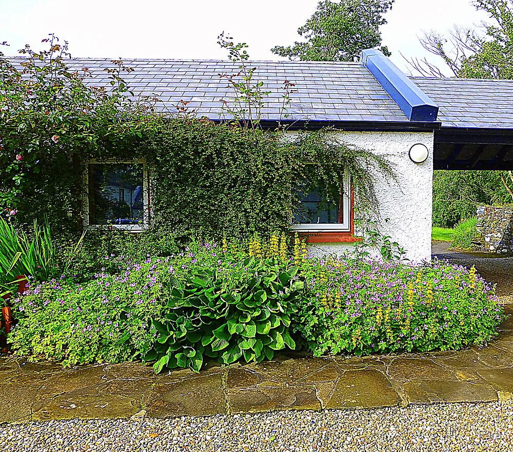 An Irish Cottage by Fara