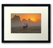 Marvelling at the Rising Sun Framed Print