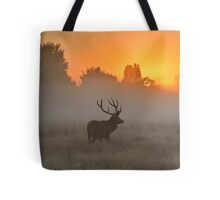Marvelling at the Rising Sun Tote Bag