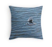 Little Gull Throw Pillow