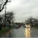 Wet Weekend by John Dalkin