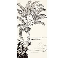Pestonjee Bomonjee sitting in his palm-tree and watching the Rhinoceros Strorks bathing Photographic Print