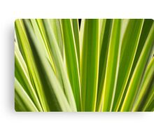 Nature Pattern, Palm leafs - Green, yellow stripes Design Canvas Print