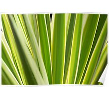 Nature Pattern, Palm leafs - Green, yellow stripes Design Poster