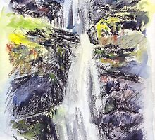 Canonteign Falls, Dartmoor by Barnaby Edwards