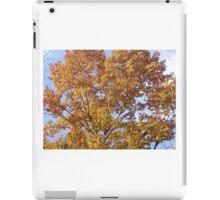 Autumn in RI iPad Case/Skin