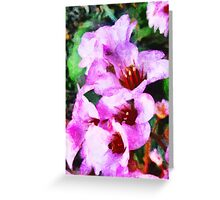 Party Flowers  Greeting Card