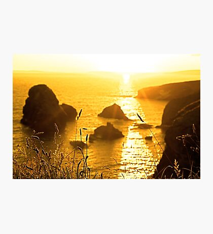 beautiful sunset over the virgin rock with wild tall grass Photographic Print