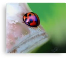 Ladybird on Leaf painting Canvas Print