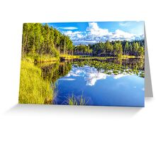 Water Lilies in the Sky Greeting Card