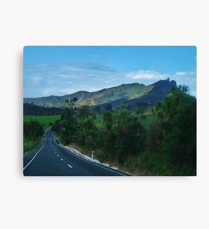 NZ Nature Canvas Print