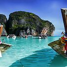Phi Phi Islands by Shannon Rogers