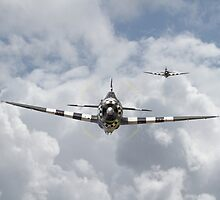 P47-D  Thunderbolt by Pat Speirs