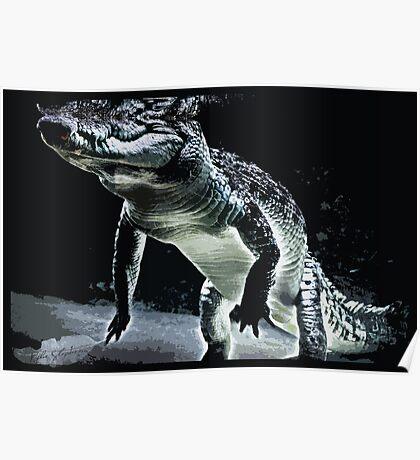 Northern Territory Crocodile Poster