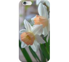 Delicate Daffodils  iPhone Case/Skin