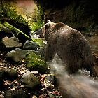 Bear Creek by peaky40