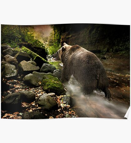 Bear Creek Poster