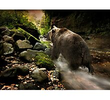Bear Creek Photographic Print