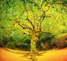 Golgotha Tree by MiVisions