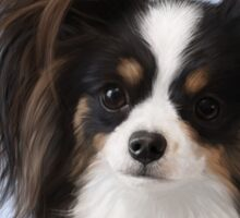 Evie the Papillon Sticker