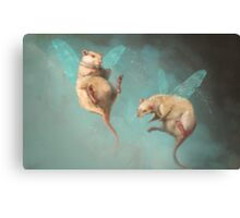 Fairies Canvas Print