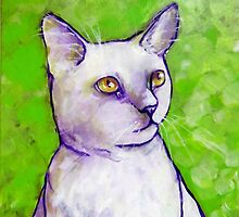 White Cat Against Lime by Carole Chapla