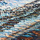 Alaska Ice Fields by Bruce Taylor