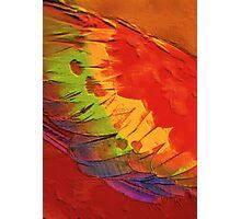macau wing Photographic Print