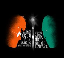 HARRY POTTER VS. VOLDEMORT by ashnicoleboots