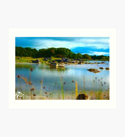 Lough Art Print