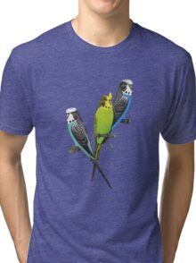 Thee Parakeets Tri-blend T-Shirt