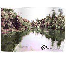 infra-red landscape Poster